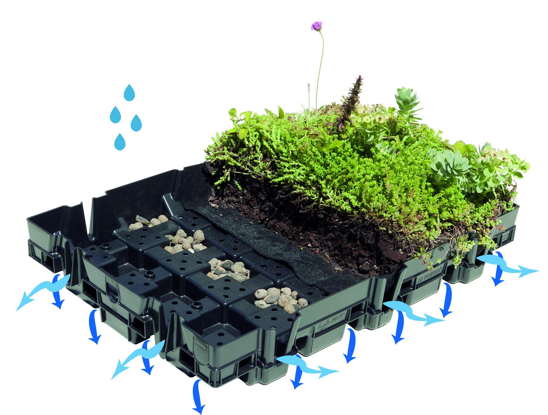 Toiture v g talis e et pergola evolutiv neostory pressroom - La toiture vegetalisee ...