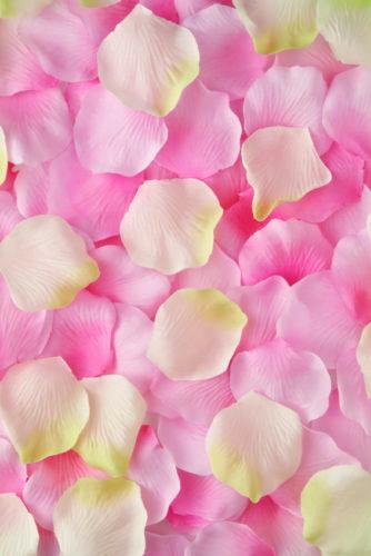 Udirev_Créative_6015 26_Pétales de roses.jpg