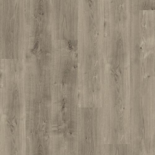 UDIREV- Liberty 55 Acoustic Chene grey-png